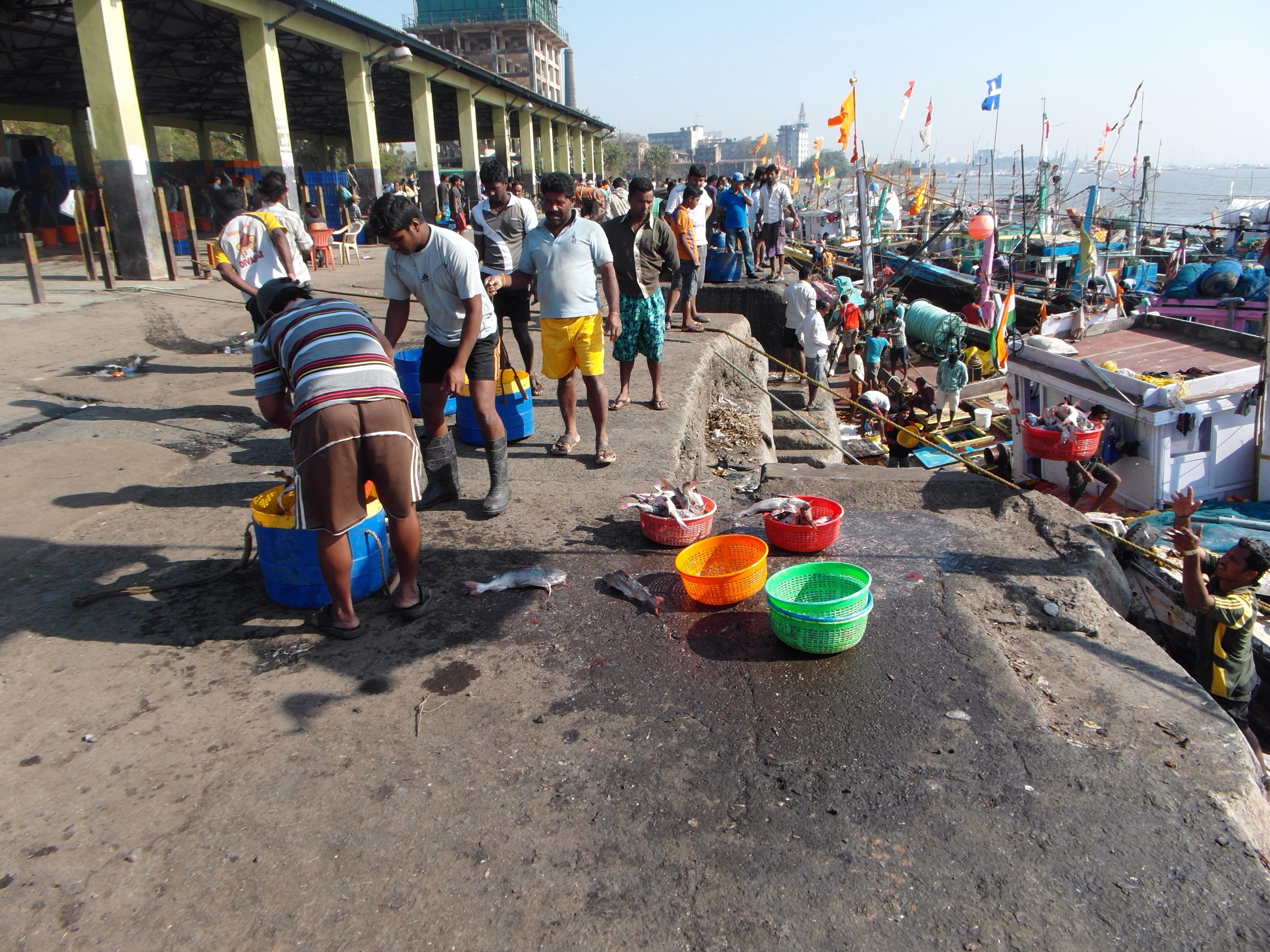 Sassoon Fishing Dock